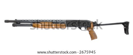 pump riffle - stock photo