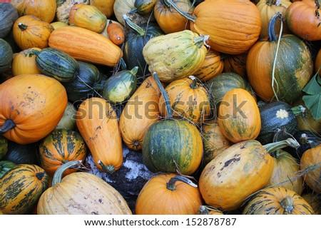 pumpkin - stock photo