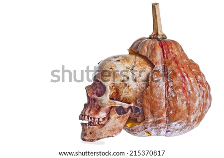 Pumpkin and Skull Halloween - stock photo