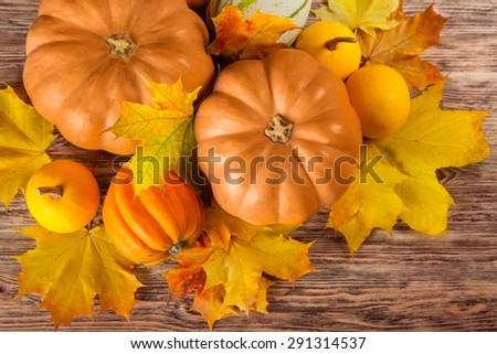 Pumpkin, halloween, autumn. - stock photo