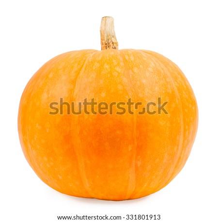 Pumpkin on a white background, the pumpkin isolated vegetables on a white background - stock photo