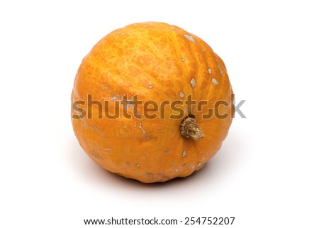 pumpkin on the white background - stock photo