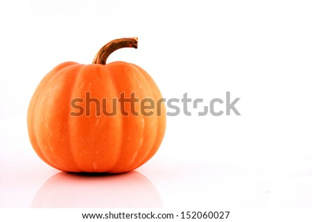 Pumpkin on white background, concept of nature - stock photo