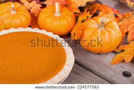 Pumpkin pie with small pumpkins and leaves  - stock photo
