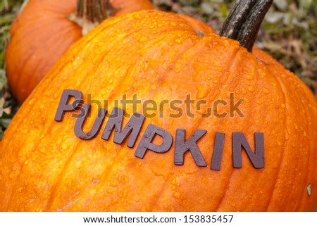 Pumpkin spelled out on top of large orange pumpkin - stock photo