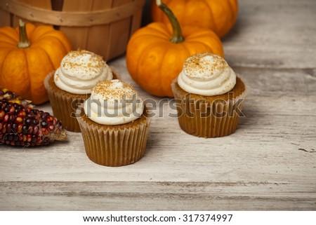 Pumpkin spice cupcakes and mini pumpkins in fall scene.  - stock photo