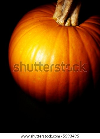 pumpkin vertical - stock photo