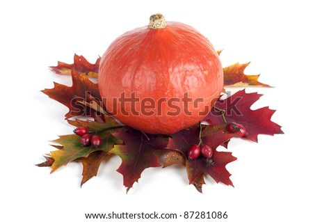 Pumpkin with fall red leaves on white Background - stock photo