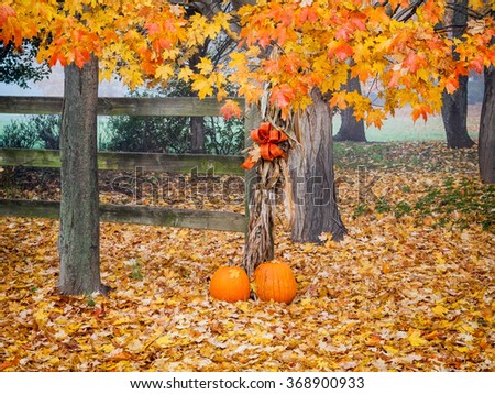 Pumpkins and Autumn leaves in rural Central New Jersey. - stock photo