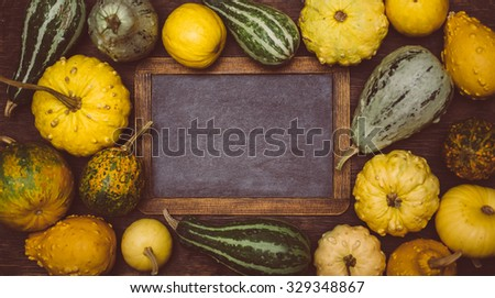 Pumpkins and Vintage blackboard with copyspace. Thanksgiving day concept. Selective focus - stock photo