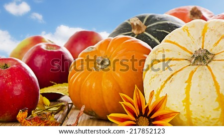 Pumpkins, apples and  fall leaves. Selective focus - stock photo