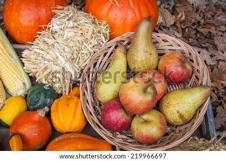 Pumpkins, apples, pears and straw on a wooden plate. - stock photo