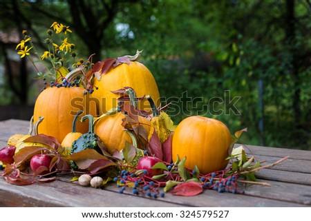 Pumpkins autumn colored decoration,aple, nuts - stock photo