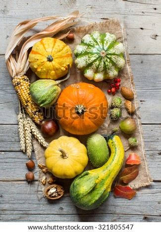 Pumpkins, corn cob, wheat spikes, nuts, acorns, leaves and berries on wooden background - stock photo
