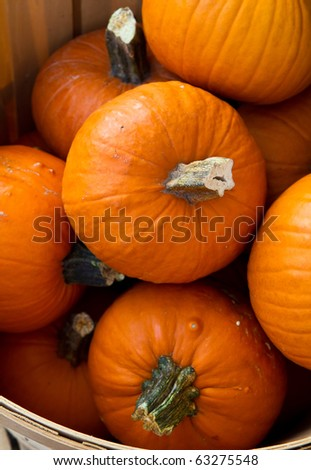 Pumpkins in a basket at a farmer's market - stock photo