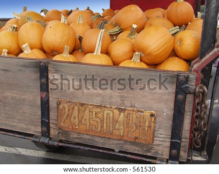 pumpkins in antique truck - stock photo