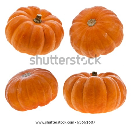 Pumpkins isolated on white - stock photo