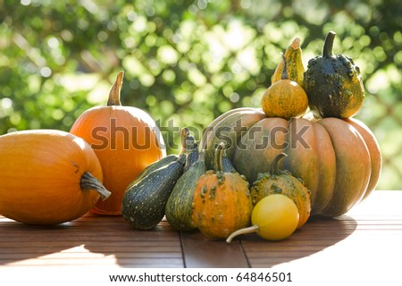 Pumpkins on a table - stock photo