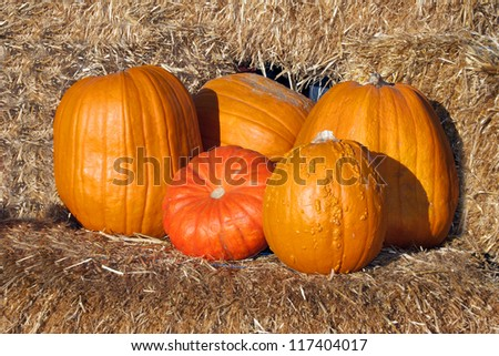 Pumpkins on Hay Bales - stock photo