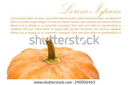 pumpkins on white background with copy space. - stock photo