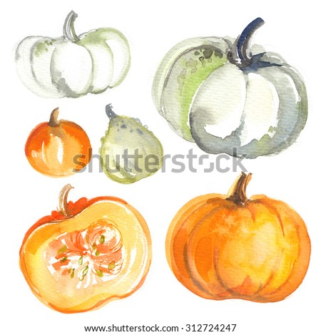 Pumpkins painted with watercolors on white background. Colored vegetables painted on paper. Autumn vegetables - stock photo
