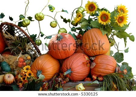 Pumpkins, sunflowers and other vegetables for Halloween harvest - stock photo
