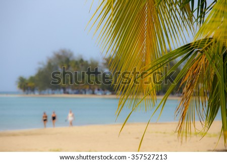 Punta Embarcadero Tropical Beach in Puerto Rico with Palm Trees Golden Sand and People Walking along the Bay - stock photo