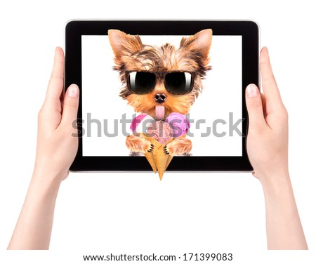 puppy dog licking with ice cream on a digital tablet screen - stock photo