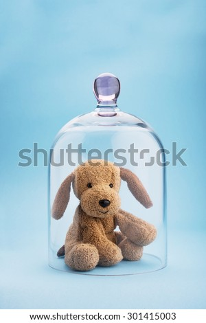 Puppy toy protected under a glass dome on blue background - stock photo