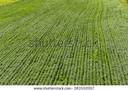 Pure farmland - stock photo
