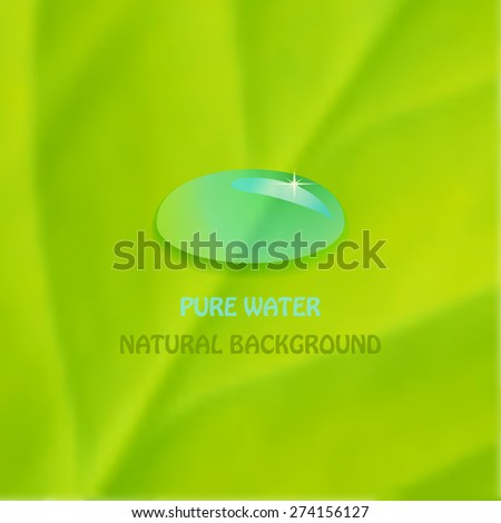 Pure water drop on green leaf. Raster version. - stock photo
