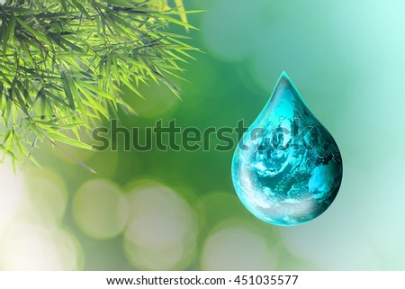 Pure water is extracted from bamboo health.Oil .compensate rich liquid fuel Renewable Energy ;Elements of this image furnished by NASA - stock photo