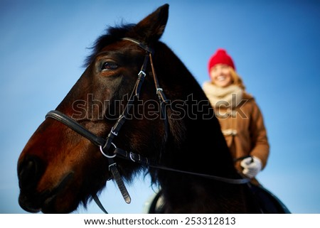 Purebred horse with young woman riding it - stock photo