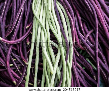 Purple and green Chinese long beans. - stock photo