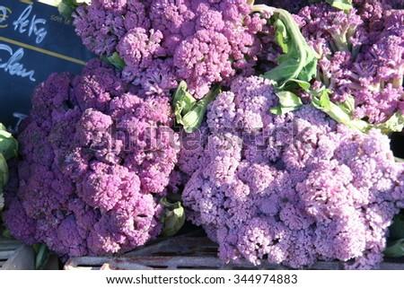Purple and violet cauliflower heads, farmers market, France. - stock photo