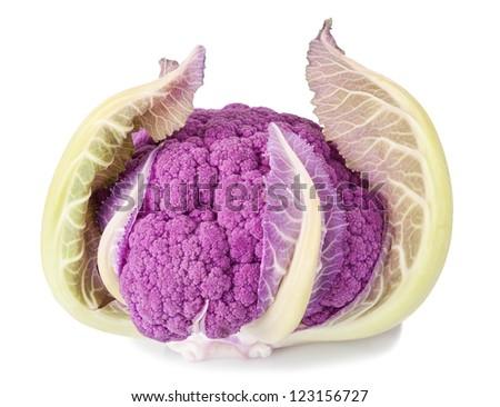 Purple cauliflower isolated on white - stock photo