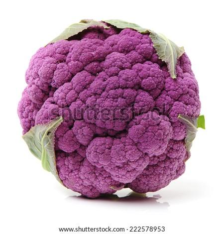 Purple cauliflower on white background - stock photo