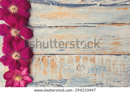 Purple clematis flowers on a wooden background - stock photo