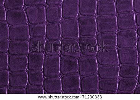 Purple crocodile leather texture - stock photo