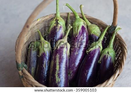 Purple eggplant with selective focus,Thai food style. - stock photo