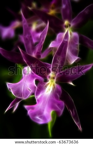 Purple Orchids A fractal filtered image of purple orchid blooms. Vertical. - stock photo