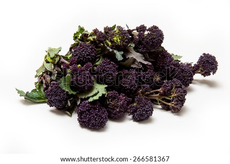 Purple sprouting broccoli isolated on a white studio background. - stock photo