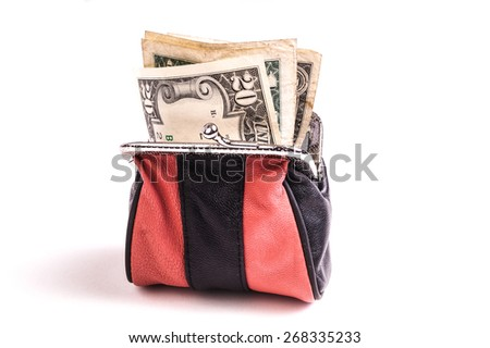 Purse with Dollar Bills, a nest egg and money for payment - stock photo