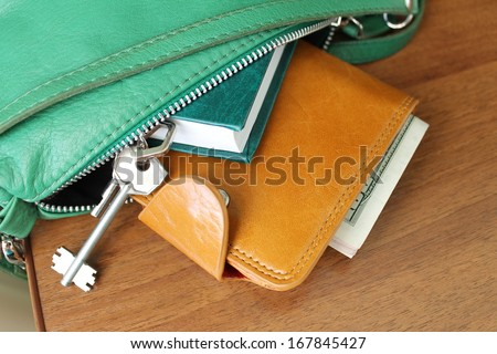 Purse with money. Women's accessories. Things from open bag - stock photo