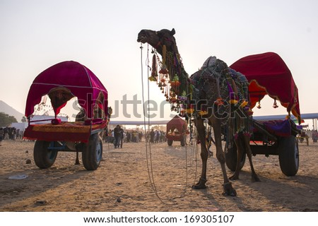 PUSHKAR, INDIA - NOVEMBER 15: Camal fair at amusement park during traditional camel mela in Pushkar on November15 ,2013 in Pushkar, Rajasthan, India - stock photo