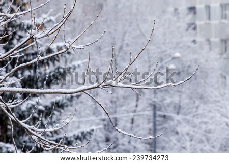 Pushkino, Russia, on December 21, 2014. A blizzard at the beginning of winter - stock photo
