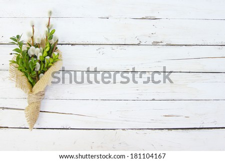 pussy willow twigs on green wood background - stock photo