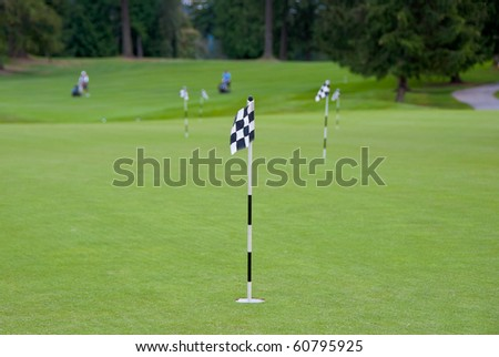 Putting area over a blurred green. Shallow depth of field. Focus on the first flag. - stock photo