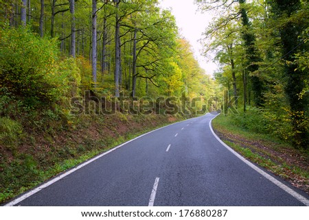 Pyrenees curve road in forest of Spain - stock photo
