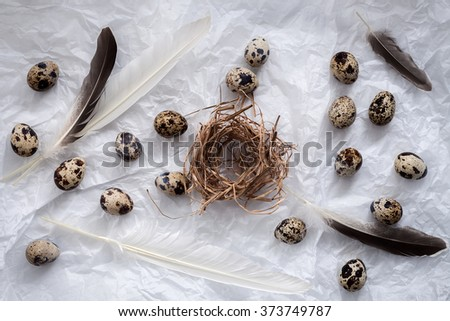 quail eggs flat lay still life with food stylish fresh raw ingredient poultry healthy cholesterol protein vitamin natural rustic flat lay - stock photo